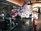雅叙園の桜のディスプレイ