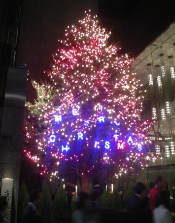 銀座ミキモト クリスマスツリー