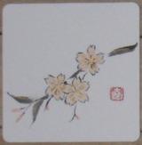 4月 桜のコースター