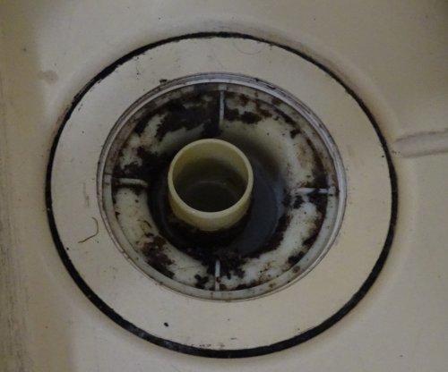 汚れた洗濯機の排水口を掃除