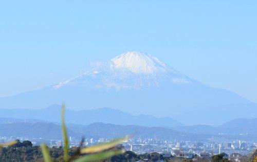 鎌倉山から富士山