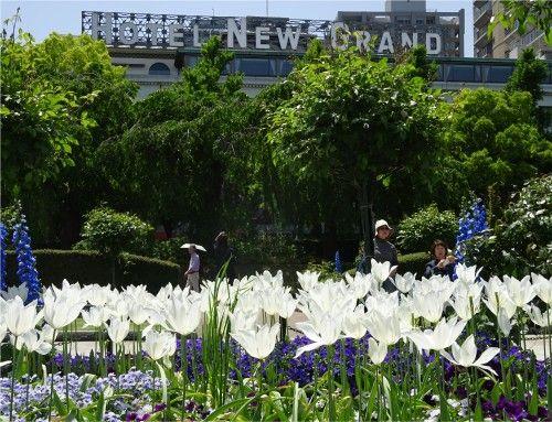 「第33回 全国都市緑化よこはまフェア」のみなとガーデンの散策