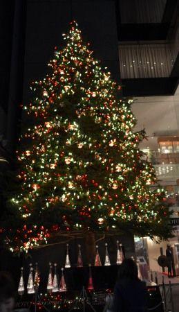 銀座ミキモトの大きなクリスマスツリー