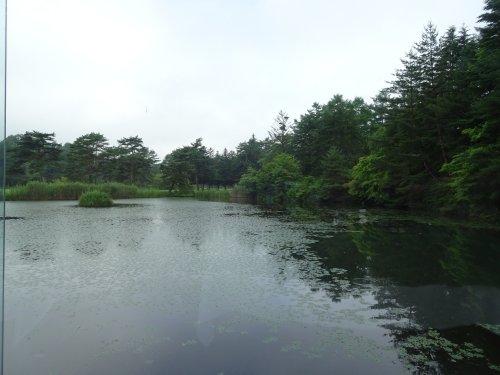 軽井沢プリンスホテルゴルフコースにてラウンド