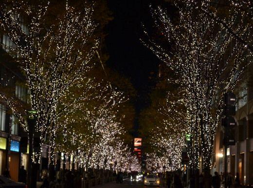 東京駅近くの 街路樹にイルミネーションライト