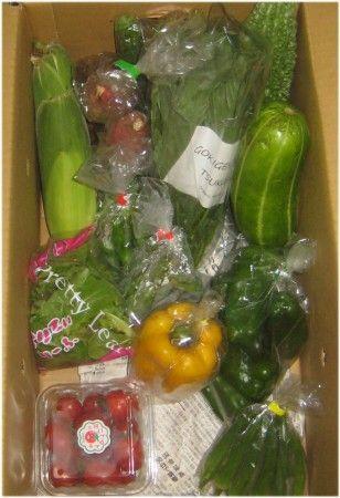 風評被害にあって困っている茨城の野菜をネット通販