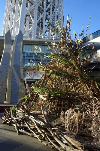 東京スカイツリーの下に、クリスマスツリー