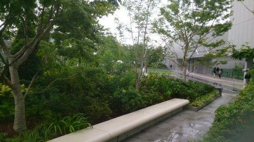 GINZA SIX(ギンザ シックス)の屋上庭園