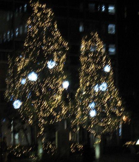 神保町のクリスマスツリー