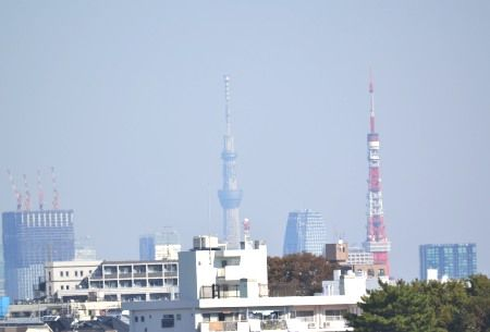 奥沢から東京タワーとスカイツリーが同じ高さに見えました