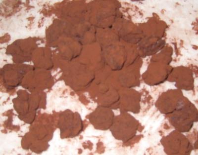 ドライフルーツ(レーズン、ラズベリー、ブルーベリー)チョコを自作