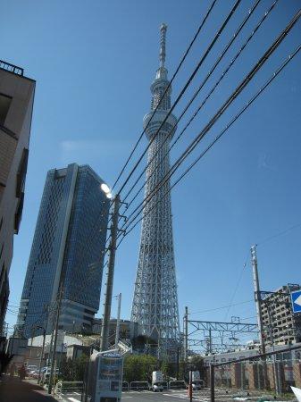 東京スカイツリー、隅田川の桜祭り、向島芸者の茶店、