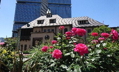 赤坂プリンス クラシックハウス(旧李王家邸(赤坂プリンスホテル 旧館))のバラがきれいでした