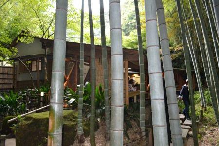 鎌倉 報告寺 茶店