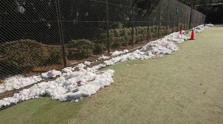 井之頭公園のテニスコートの雪 2月8日