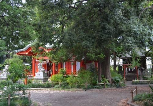 自由が丘 熊野神社