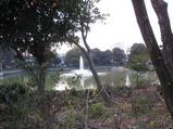 碑文谷公園の朝
