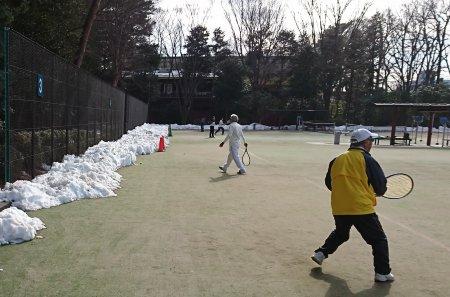 井之頭公園のテニスコートの雪 1月29日