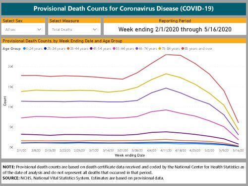 米国CDC全死者数の推移