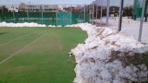碑文谷のテニスコートの雪