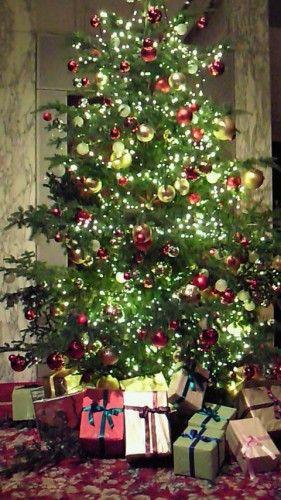 郷ひろみのクリスマスディナーショー