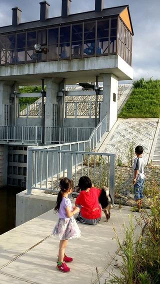 五十嵐川 犬の散歩 三条市 県央