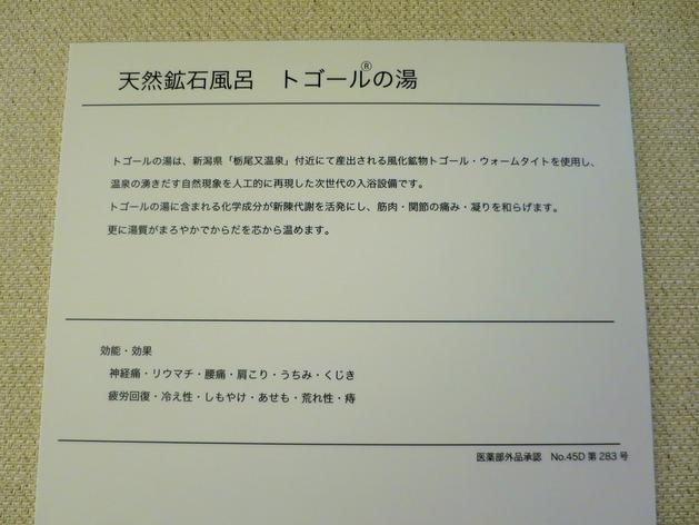 IMG_7509 (2)