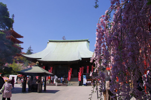高幡不動尊201104-5