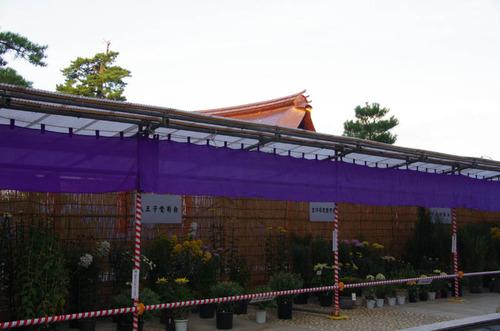 高幡不動尊201210-9
