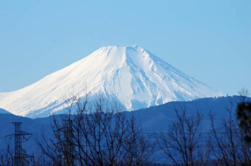 昭和記念公園201501-8
