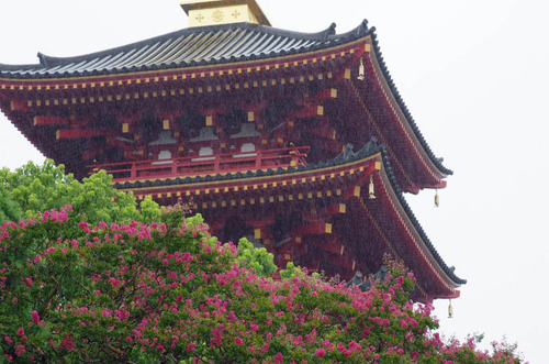 高幡不動201209-4