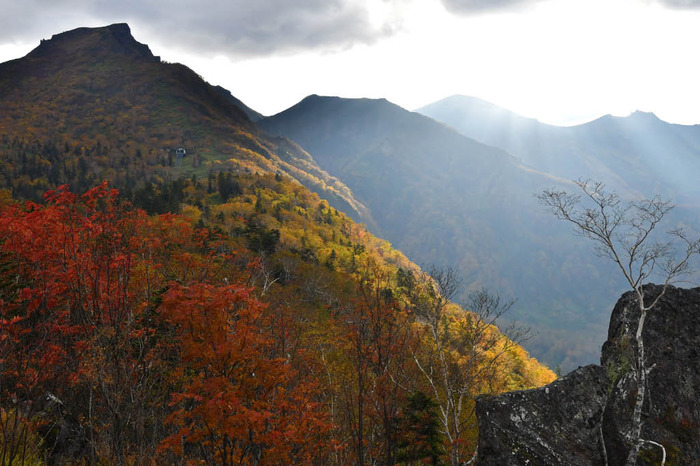 大雪山黒岳201709
