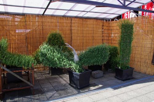高幡不動尊20101023-4