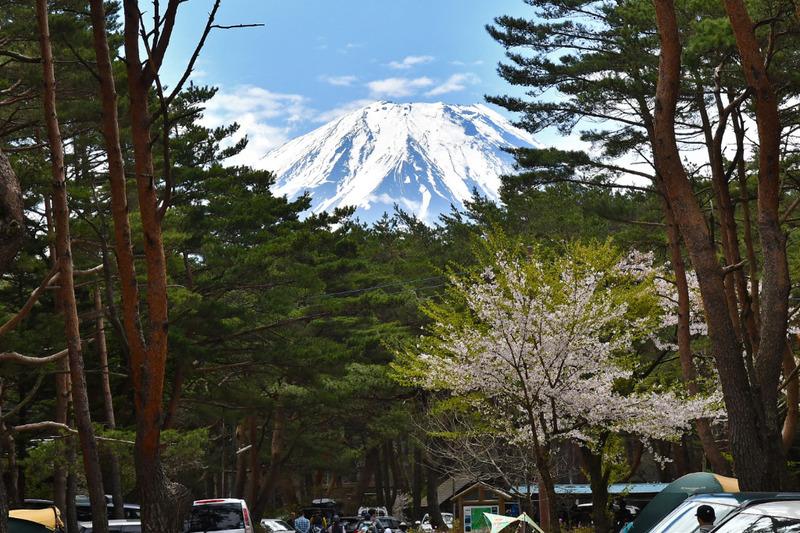 本栖湖キャンプ場からの富士山