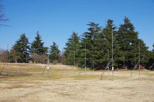 昭和記念公園201501-11