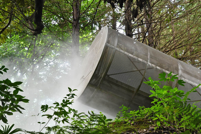 昭和記念公園201708