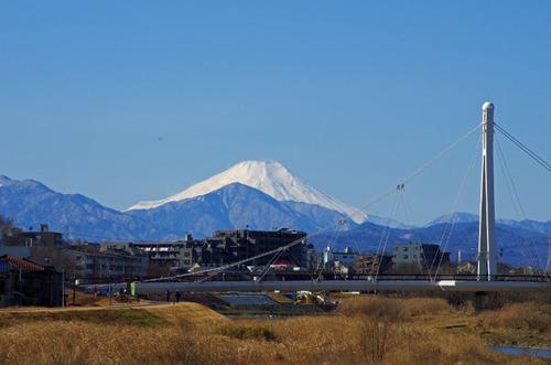 高幡不動尊20110213-12