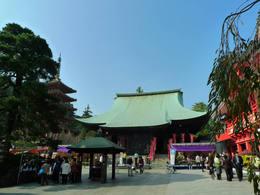 高幡不動尊菊祭り200910-2