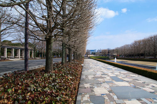 昭和記念公園201002-17