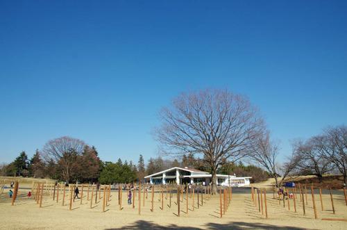 昭和記念公園201501-12