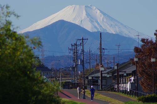 浅川河川敷201112-2