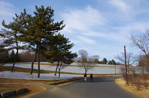 昭和記念公園201105-2