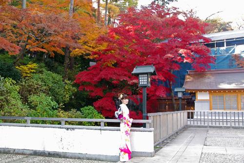 高幡不動尊201011-4