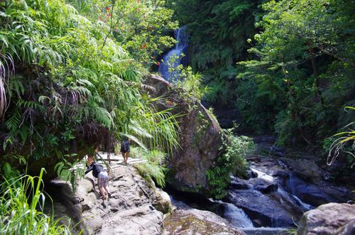 西表島ナーラの滝201108-7