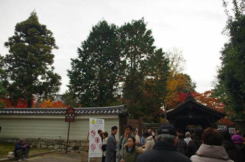 京都201307-2