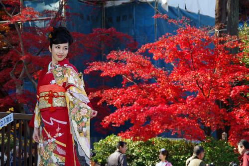 高幡不動尊201011-5