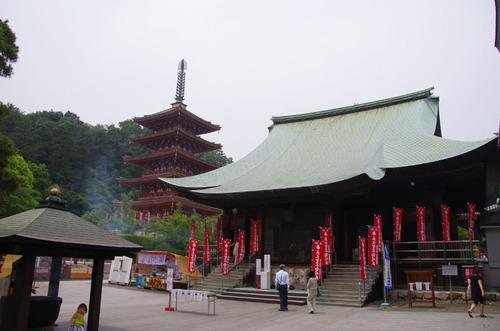 高幡不動あじさい201106-6