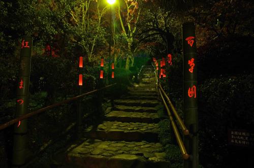 京王百草園201311-13