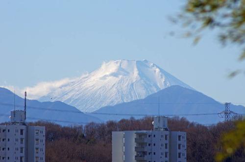 京王百草園201201-9