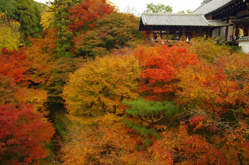 京都東福寺201211-5